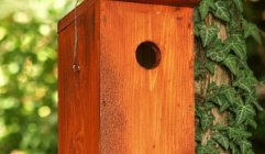 Mesterséges madárodú-telepek és információs táblák kihelyezése