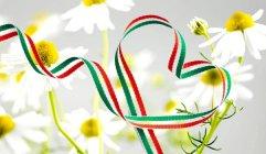 Helyi értékek gyűjtése külhoni magyarokkal